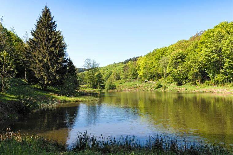Naturschutz in Hessen