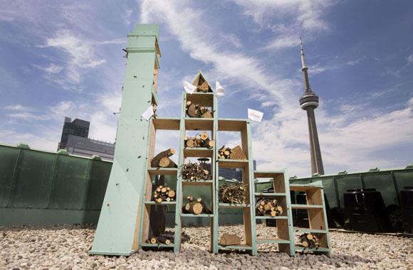 Luxusdomizil für Bienen: Fairmont Hotel eröffnet erstes Insektenhotel