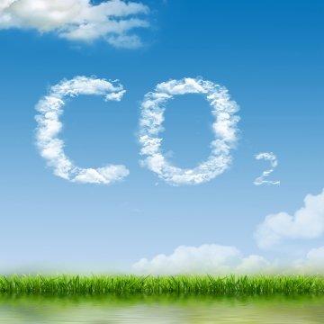 CO2-Ausstoß kompensieren und Klima schützen