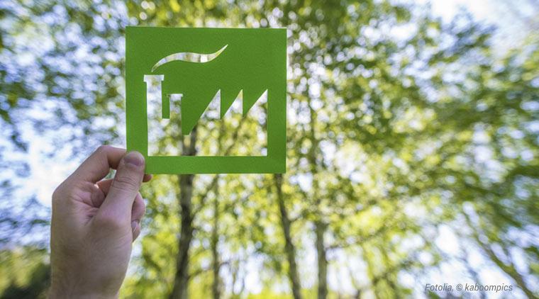 Von der Wiege zur Wiege: Was steckt alles hinter diesem nachhaltigen Design-Ansatz?
