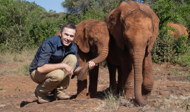 Dirk Steffens traf bei siener livin Planet tour auch Elefanten