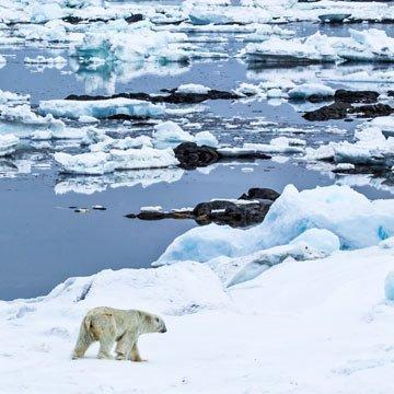 Was macht deutscher Haushaltsmüll in der Arktis?