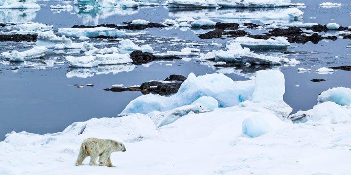 Forscher finden Deutschen Plastikmüll in der Arktis