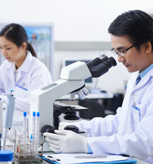 Forscher entwickeln aus Versehen Enzym gegen Plastikmüll
