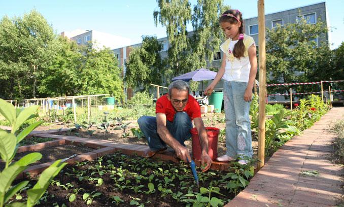 Urabn Gardening stärkt den Zusammenhalt