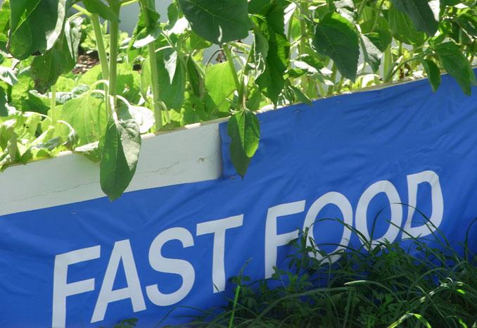 Gemüse aus dem Garten als Fast Food bestellen