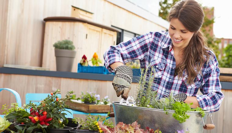 Gärtnern ohne Torf schützt die Umwelt
