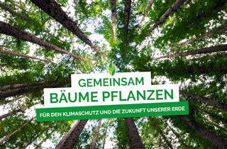 Klimaschutz durch Online-Shopping: Ein Baum für jeden Einkauf