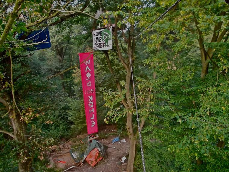 Leben in den Baumwipfeln: Die Waldbesetzung im Hambacher Forst