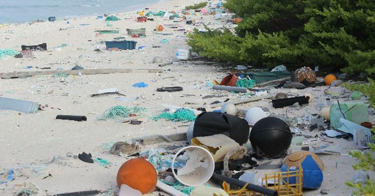 Henderson Island ist die schmutzigste Insel der Welt