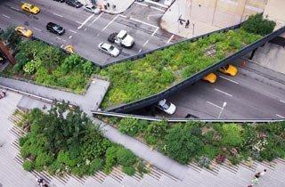 High Line Park - Eine grüne Oase in New York City