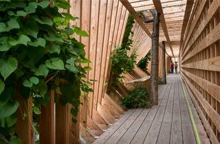Oszillierender Holztunnel führt sicher durch Nantes