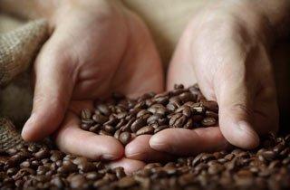 Das steckt wirklich hinter dem Kaffee von Nespresso
