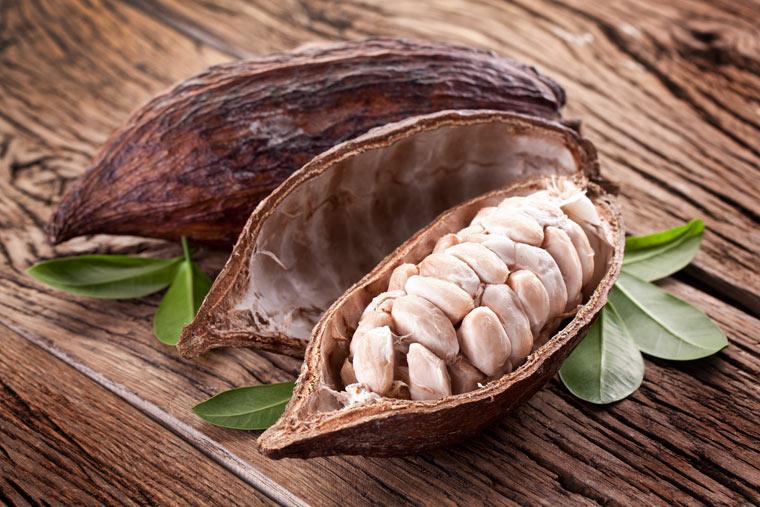 """Kakao — """"das göttliche Gewächs"""""""