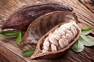 Die Geschichte des Kakao