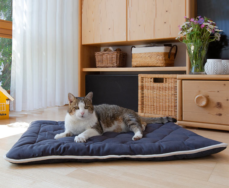 nachhaltige Ruheoase für Katzen