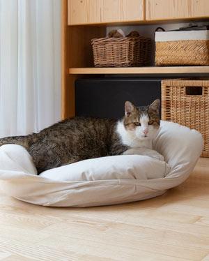 Katzenbett mit erhöhtem Rand