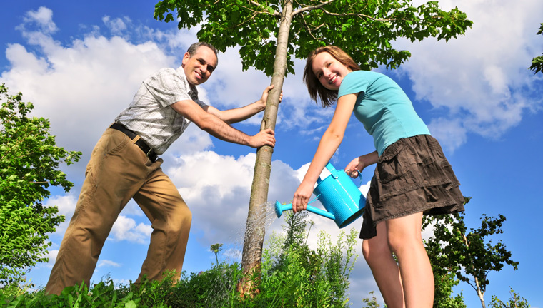 Challenge zum Umweltschutz: ein Baum für jede 50 Kilometer