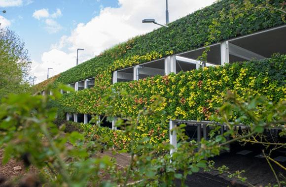 Living Wall: Die größte grüne Wand Europas