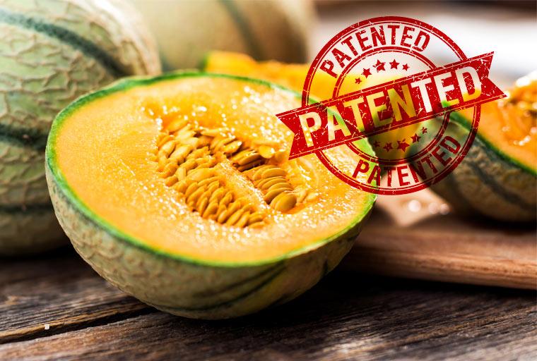 Agrarkonzerne sichern sich nach wie vor Patente auf Lebensmittel