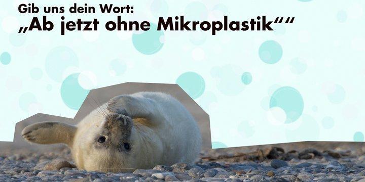 Mikroplastik: Je kleiner, desto gefährlicher