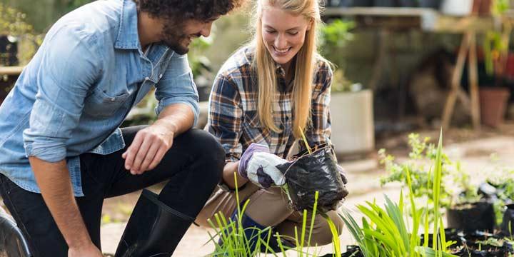 Nachhaltige Vorsätze Tipps für umweltbewusstes gesundes Leben