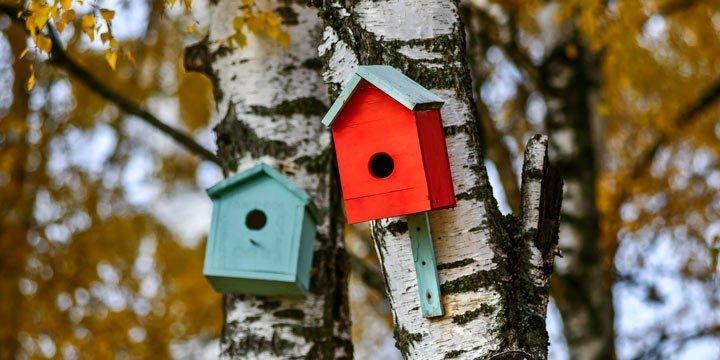 Was ist nachhaltig an... Nisthilfen für verliebte Vögel?