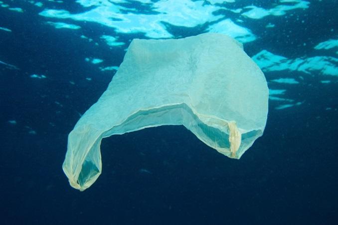 Plastik-Müll verschmutzen unsere Weltmeere