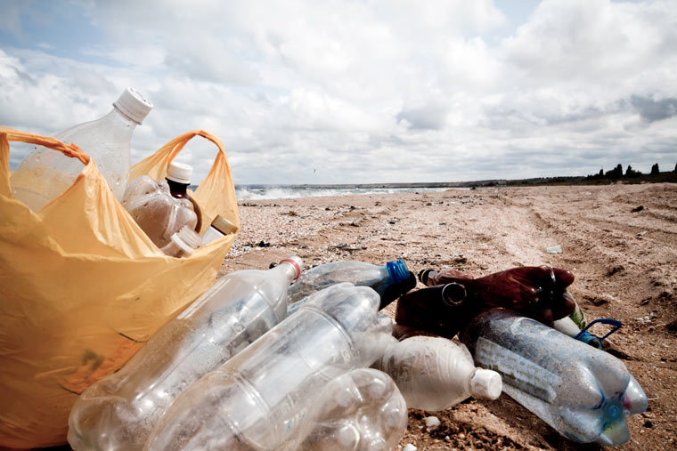 Fressen Bakterien bald unseren Plastikmüll?