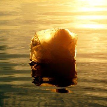 Wie bitte?! Michigan verbietet das Plastiktüten-Verbot!