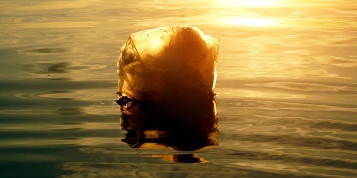 Michigan verbietet das Verbot von Plastiktüten