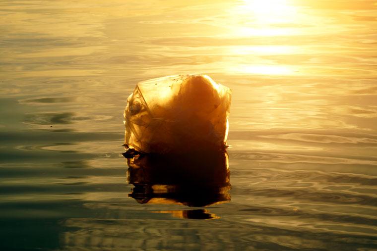 Michigan verbietet Plastiktüten Verbot