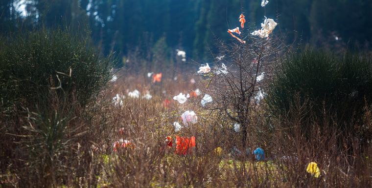 Aktionen gegen Plastikflut