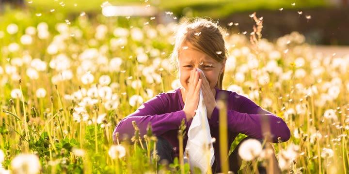 Pollenflug aktuell: Der Pollenflugkalender für Allergiker