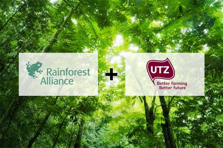 Zusammenschluss von Rainforest Alliance und UTZ für mehr globale Nachhaltigkeit