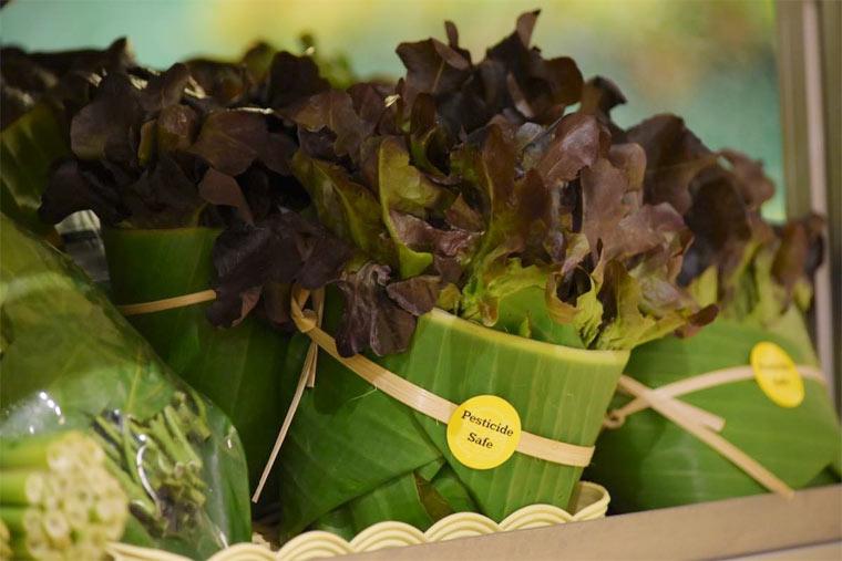 Salat in Bananenblättern verpackt