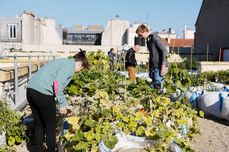 Urbane Gärten in Paris