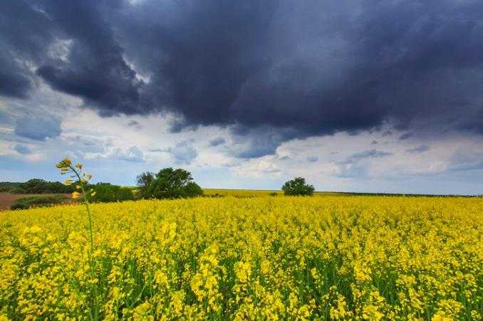 Wetterextreme werden zur Belastung. © cta88/iStock/Thinkstock