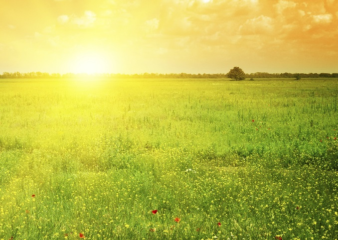 Woche der Sonne Serg © Velusceac/iStock/Thinkstock