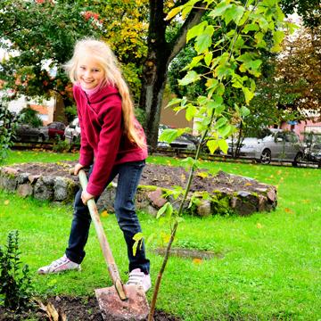 Baumpflanz-Aktion für eine grünere Zukunft