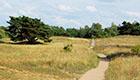Naturschutzgebiet mitten in der Stadt