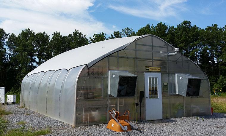 Grubbly Farms Gewächshaus