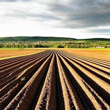 Das Geschäft mit dem Ackerland