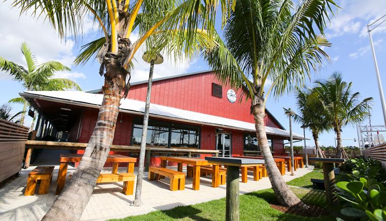 Die Saltwater Brewery aus Florida hat  Sechserträger entwickelt, die zu 100% biologisch abbaubar und kompostierbar sind