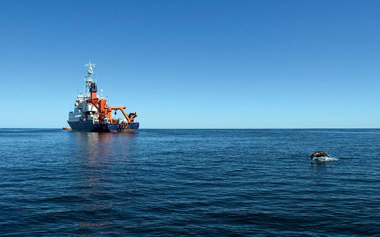 Mithilfe eines Tauchroboters untersuchen die Meeresforscher das Phänomen der heißen Quellen