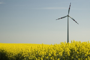 Die Energiewende muss schneller kommen ©iStock