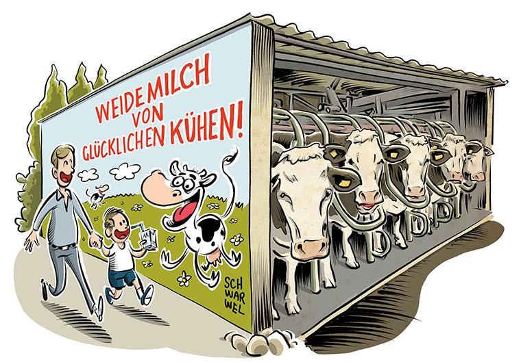 Anbindehaltung für Milchkühe bald verboten?