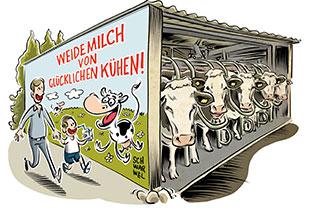 Die Wahrheit über Milchviehhaltung in Deutschland