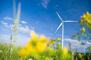 Klimaschutz-Maßnahmen werden vom Land unterstützt