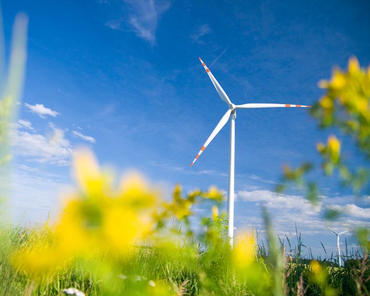 Für Klimaschutz gibt es in Hessen Fördergelder